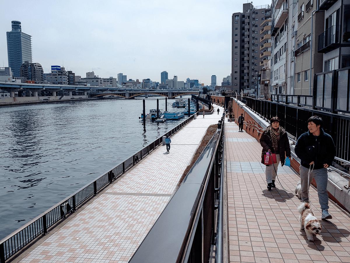 台東區藏前站Artessimo Vento 1 房住宅公寓