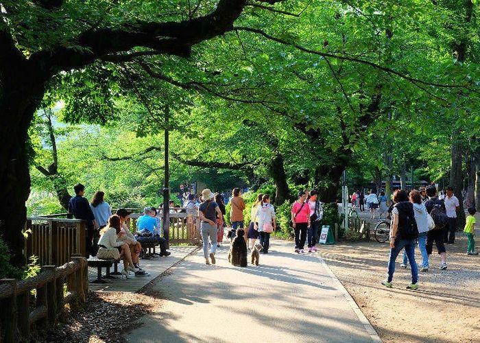 東京自然環境